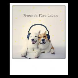 Pickmotion Photo-Postkarte Freunde Fürs Leben