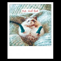 Pickmotion Photo-Postkarte Igel - Liebe