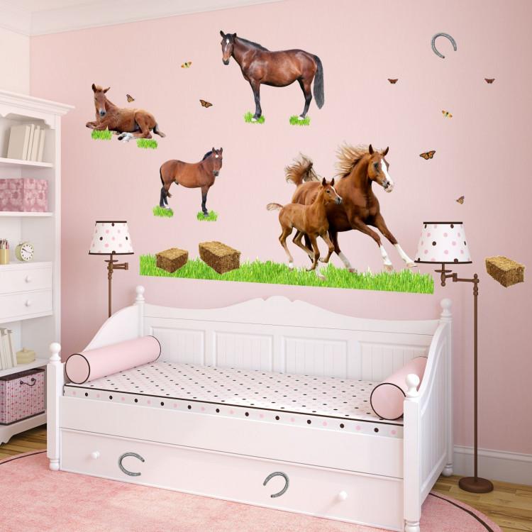 Wandtatoos Pferde 003 pferde fohlen wiese reiten fotorealistisch