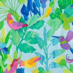 Geschenkverpackung Design: bunte Vögel