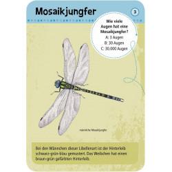 MOSES Kartenspiel- Expedition Natur - 50 heimische Insekten & Spinnen