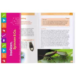 MOSES Expedeition Natur- Insekten, Spinnen & Co.