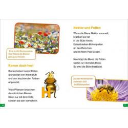 TESSLOFF Buch WAS IST WAS Erstes Lesen easy! Band 3. Wie lebt die Honigbiene