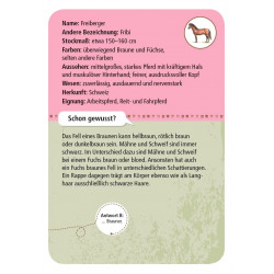 MOSES Kartenspiel- Expedition Natur - 50 Pferde & Ponys