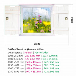 045 Wandtattoo Schmetterling auf Blumenwiese im Fenster mit Fensterläden