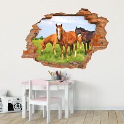 056 Wandtattoo Pferde - Loch in der Wand Wiese Fohlen braun schwarz reiten Koppel