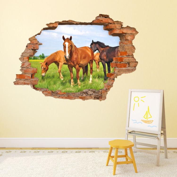056 Wandtattoo Pferde - Loch in der Wand Wiese Fohlen braun schwarz