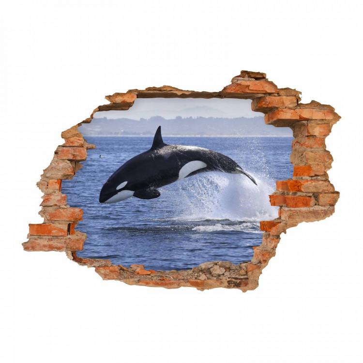 nikima - 102 Wandtattoo Orca Killerwal Schwertwal - Loch in der Wand