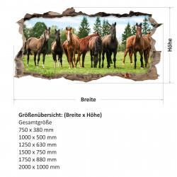 nikima - 125 Wandtattoo Pferde braun Koppel Wiese - Loch in der Wand