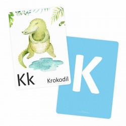 SET 26 Tier Buchstabenkarten