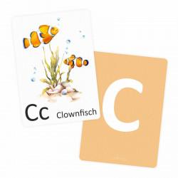 Buchstabenkarte - C wie Clownfisch