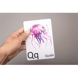 Buchstabenkarte - Q wie Qualle