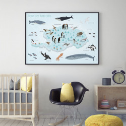 Kinder Lernposter - Tiere der Antarktis - Wal Delfin Pinguin Robbe Südpol Wanddeko Kinderzimmer