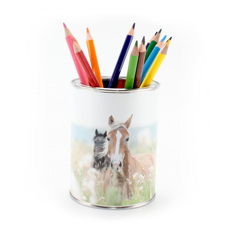 Stiftebecher Pferde inkl. 12 Dreikant Buntstiften  Kinder Stifteköcher Stiftehalter Schreibtisch Organizer Mädchen Junge