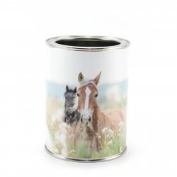 Stiftebecher Pferde - Kinder Stifteköcher Stiftehalter