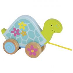 goki bunte Ziehtier Schildkröte, Susibelle